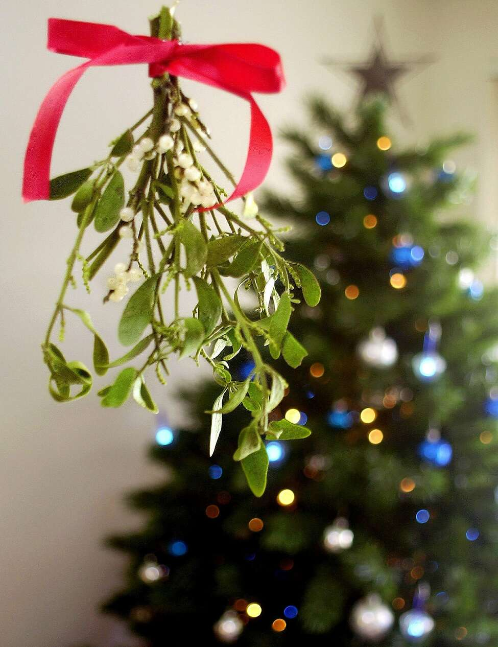 A sprig of mistletoe hangs as decoration for the holiday season Thursday, Dec. 20, 2001 in Phoenix. Known as the tiny branch that couples kiss under, few people know that mistletoe can be a kiss of death for humans and some trees. Mistletoe berries are poisonous and can bring about stomach cramps, vomiting, diarrhea and, in some cases, death if injested.