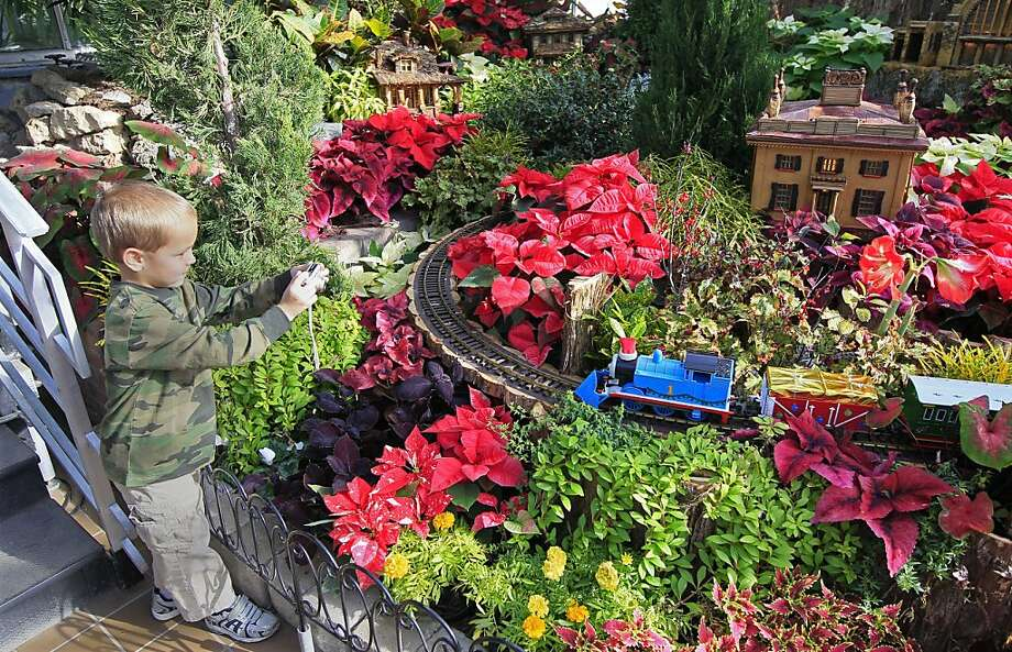 Railroad buff:Carter Breig takes a photo of a locomotive hauling freight through the Land of the Giant Poinsettias at the Trains Trestles and Traditions Holiday Show in Cincinnati. Photo: Al Behrman, Associated Press