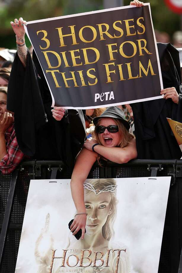 "WELLINGTON, NEW ZEALAND - NOVEMBER 28:  Protesters stand in the crowd at the ""The Hobbit: An Unexpected Journey"" World Premiere at Embassy Theatre on November 28, 2012 in Wellington, New Zealand.  (Photo by Hagen Hopkins/Getty Images) Photo: Hagen Hopkins, Getty Images / 2012 Getty Images"