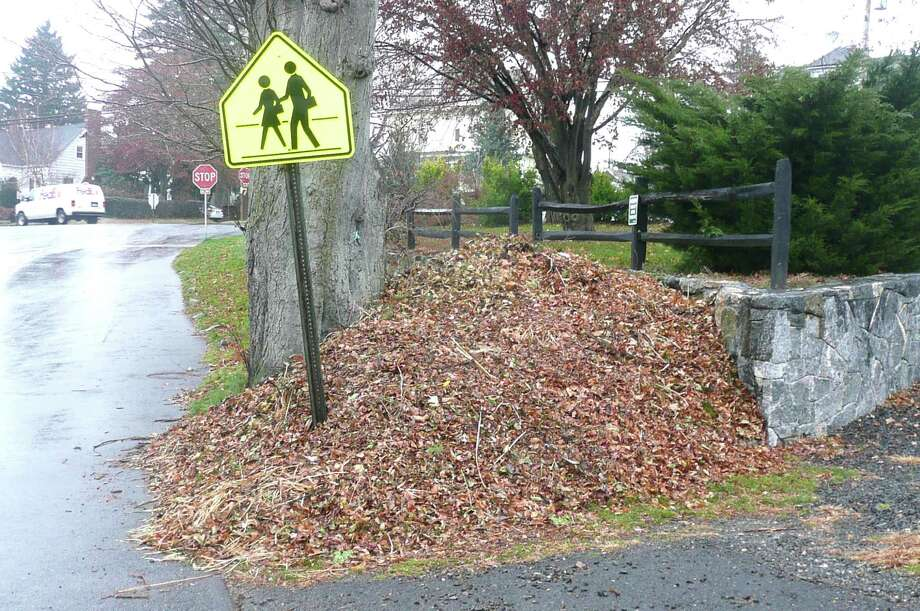 Greenwich residents have until Monday, Dec. 3 to collect their leaves roadside for one-time collection by the Highway Department on that day. Leaves should be piled loosely and placed at the edge of roads. Photo: Anne W. Semmes