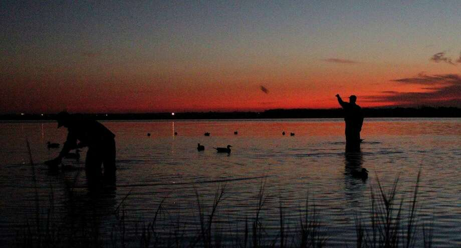 Waterfowlers Brian Smith (left) and Ed Duvall (right) set duck decoys in a marsh the Port Bay Club had for decades leased and eventually purchased and protected when the tract faced being bought by a developer. Photo: Picasa, Shannon Tompkins/Chronicle