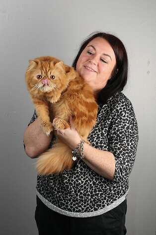 In the smooshed-face category, Candice Higgin's Red Self Persian Saint Elmosfire is going to be hard to beat. Photo: Oli Scarff, Getty Images
