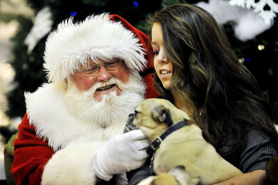 Candy canine: Candace Conger's pug King George isn't saying what he wants for Christmas, but he is accepting jowl scratches at Pet Night With Santa at the Mall of Abilene in Abilene, Texas. Photo: Eric J. Shelton, Associated Press