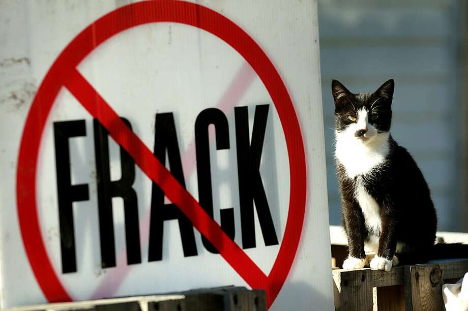 Drill somewhere else: The Tillman home in Franklin Forks, Pa., is anti-fracking, but pro-kitty. Photo: Cindy Schultz, Albany Times Union