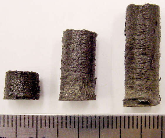 Pieces made from imitation moon rock on a 3-D printer. Photo: Washington State University