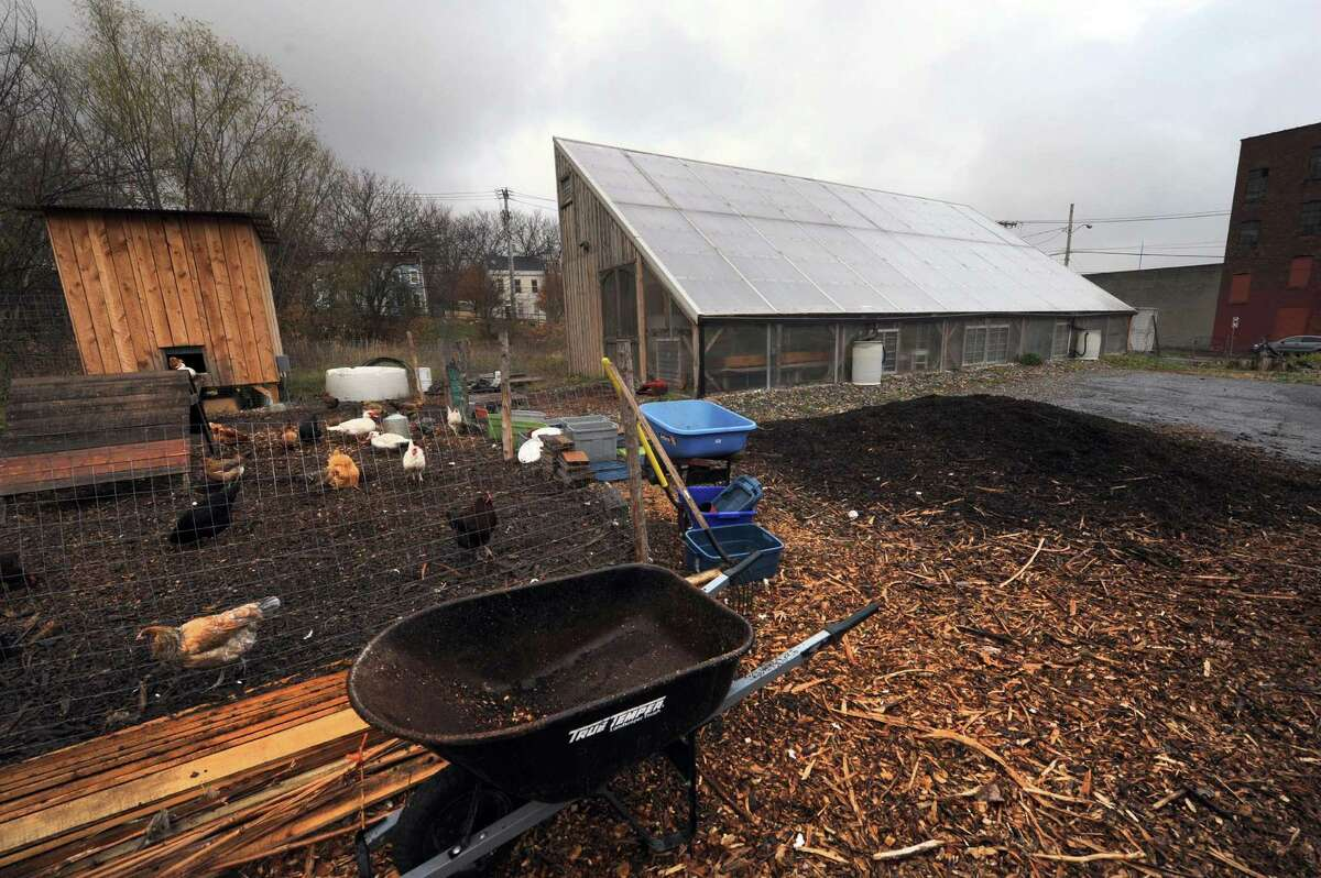 The Radix center an urban greenhouse and farming collective that raises chickens ,cold water fish and rabbits in the Mansion neighborhood. The group is looking to educate more children from the city in gardening and sustainable living in Albany, NY Tuesday Nov. 27, 2012. (Michael P. Farrell/Times Union)