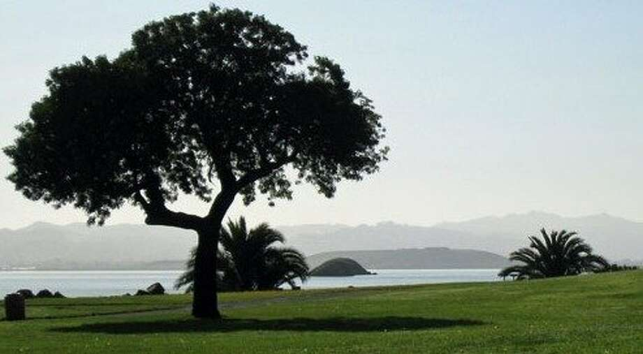 A beach area at 55-acre McNears park is protected from winter winds. From the park, you see passing ships and East Bay peaks, not to mention egrets, herons and other shorebirds. Photo: Courtesy Photo, Marin Parks