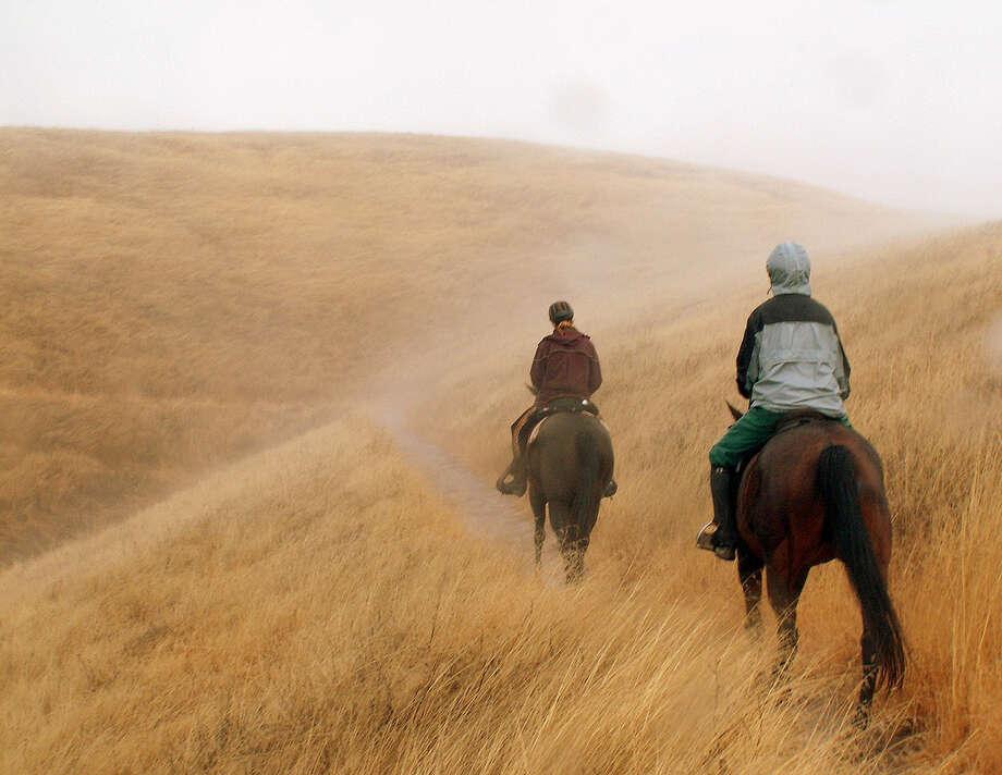 Horseback ride in the rain and fog at Russian Ridge (Kenneth C. Nitz)