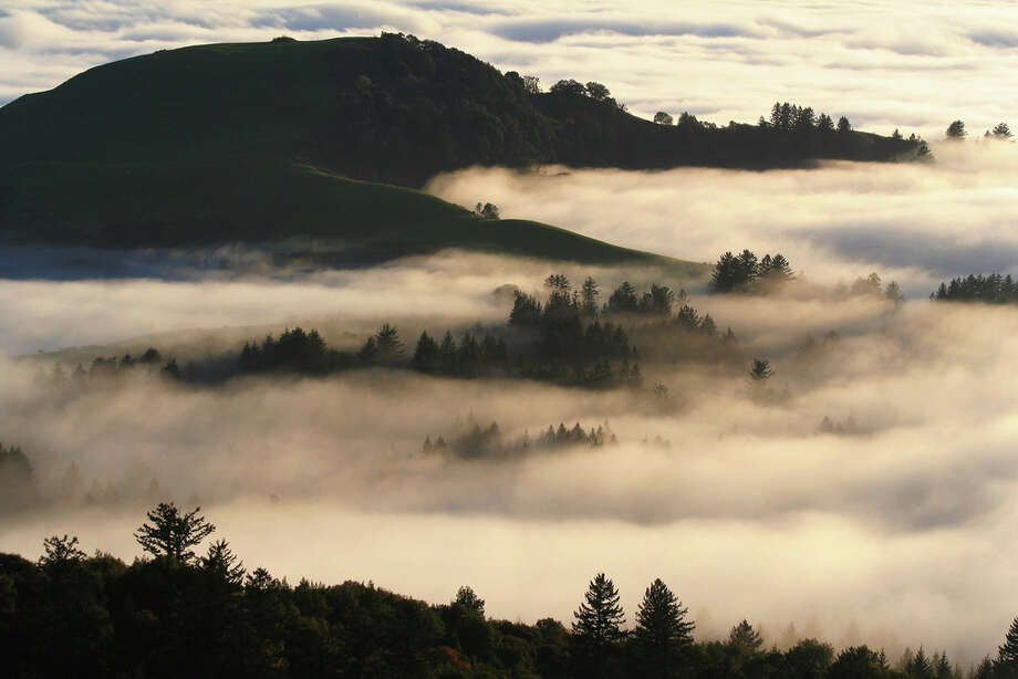 Epic shot of fog rolling in over coastal foothills below Russian Ridge (Daniel Vekhter)
