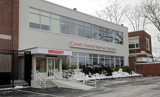 880 Canal Street in Stamford is home to the Cornell University Veterinary Specialists facility. The building is one of four on Canal Street bought by ClearRock Properties of New York City. Photo: Shelley Cryan, ST / Shelley Cryan freelance; Stamford Advocate freelance