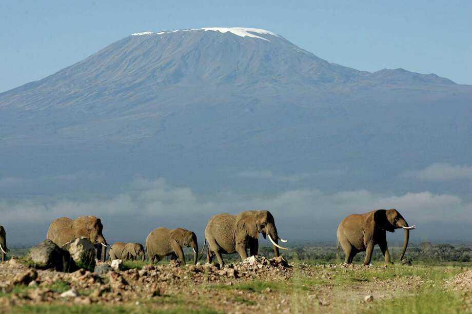 Trek Travel is offering a 12-day bike tour down Mount Kilimanjaro. Photo: KAREL PRINSLOO, STF / AP