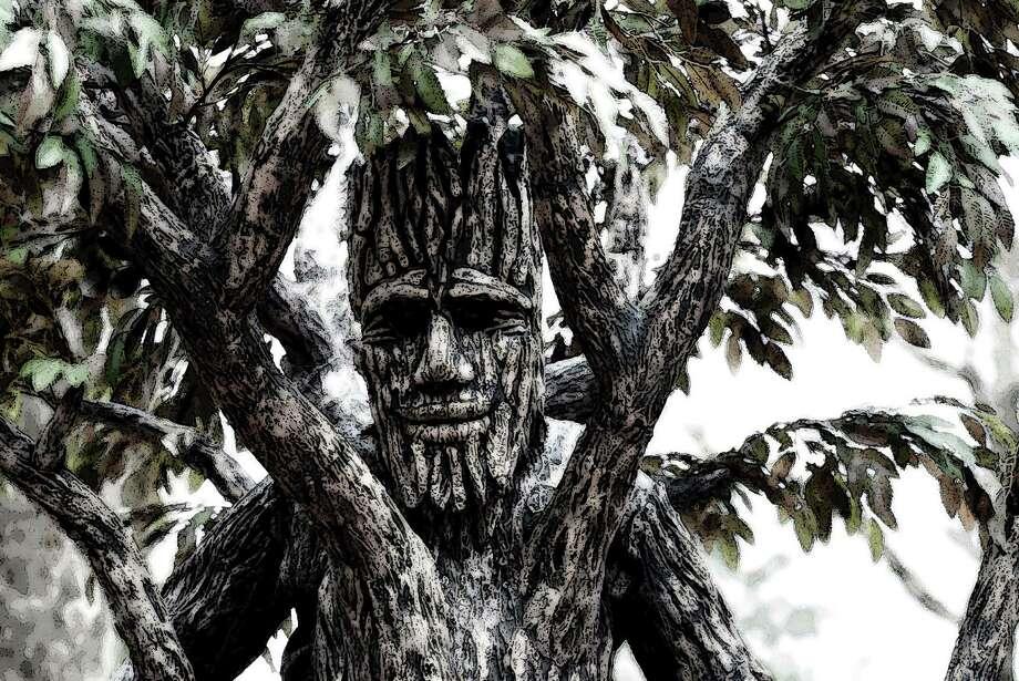 Michael Shaffer is dressed as the Walking Tree of Life Man. Steve Lathem photo Photo: Steve Lathem