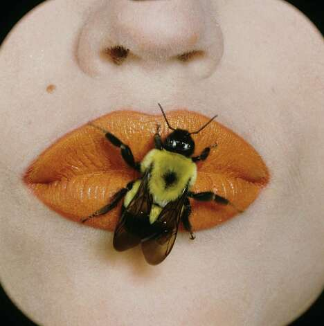 Bee sitting on the lips of a model wearing Christian Dior Haute Couleur Lipstick in Dazzling Orange Photo: Irving Penn, Christian Dior / © CondÈ Nast