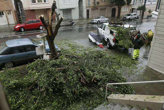 A San Francisco Public Works crew removes a fallen tree along Grove Street near Divisadero after it fell across a car in San Francisco, Calif.  on Friday Nov. 30, 2012, as another heavy rain storm moves through the Bay Area. Photo: Michael Macor, The Chronicle
