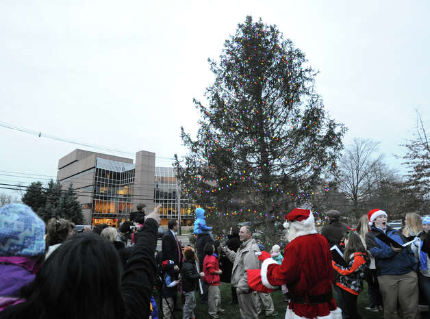 The crowd cheers seconds after the holiday tree was lighted during the annual Department of Parks and Recreation tree-lighting ceremony at Greenwich Town Hall, Friday afternoon, Nov. 30, 2012. Photo: Bob Luckey / Greenwich Time