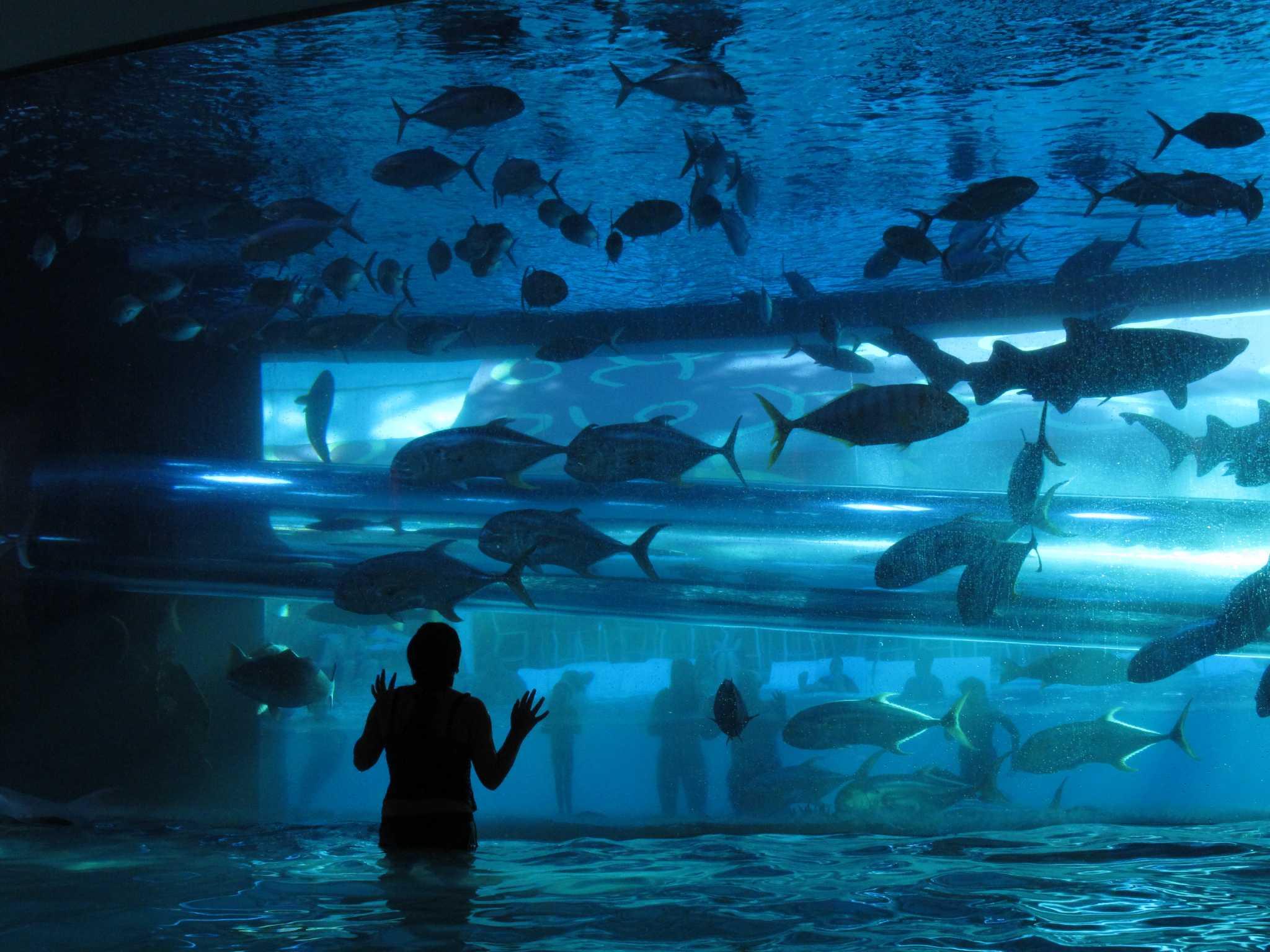 Las piscinas más impresionantes del planeta RawImage