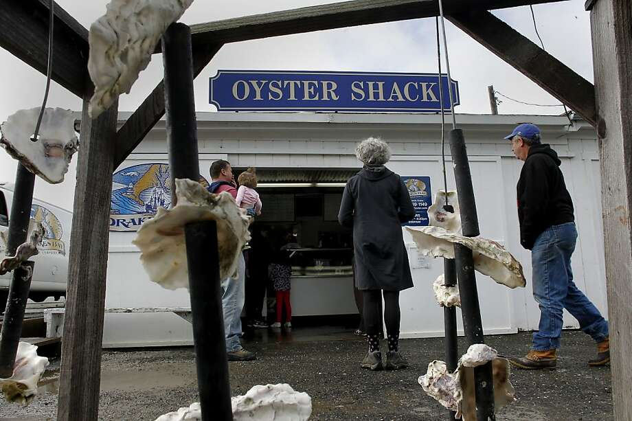 People flock to Drakes Bay for their oysters in Point Reyes, Calif.  on Saturday Dec. 1, 2012. The Drakes Bay Oyster Company received notice that U.S. Secretary of the Interior Salazar will not renew their lease and they now have 90 days of harvesting and selling of their stockpile of oysters before having to vacate the historic Drakes Bay location. Photo: Michael Macor, The Chronicle