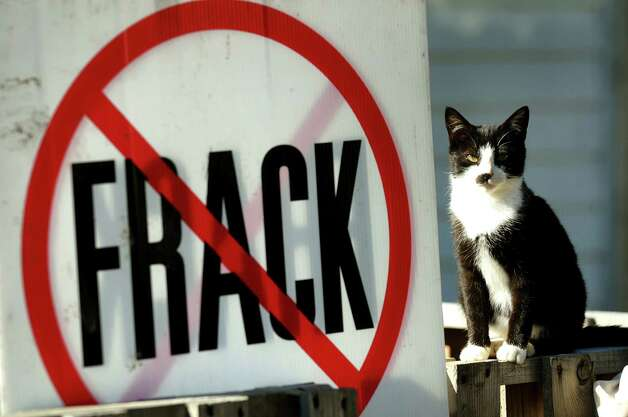 One of Doreen and John Tillman's cats sits by an anti-fracking sign on their property on Wednesday, Nov. 14, 2012, in Franklin Forks, Penn. (Cindy Schultz / Times Union) Photo: Cindy Schultz