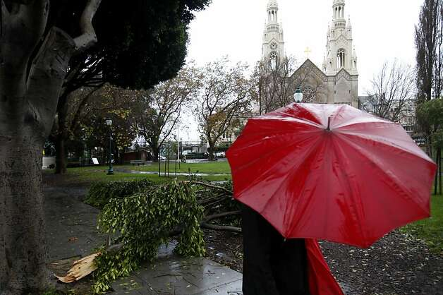 A pedestrian walks by a downed tree limb in Washington Square Park in San Francisco, Calif., Sunday, December 2, 2012. Photo: Sarah Rice, Special To The Chronicle