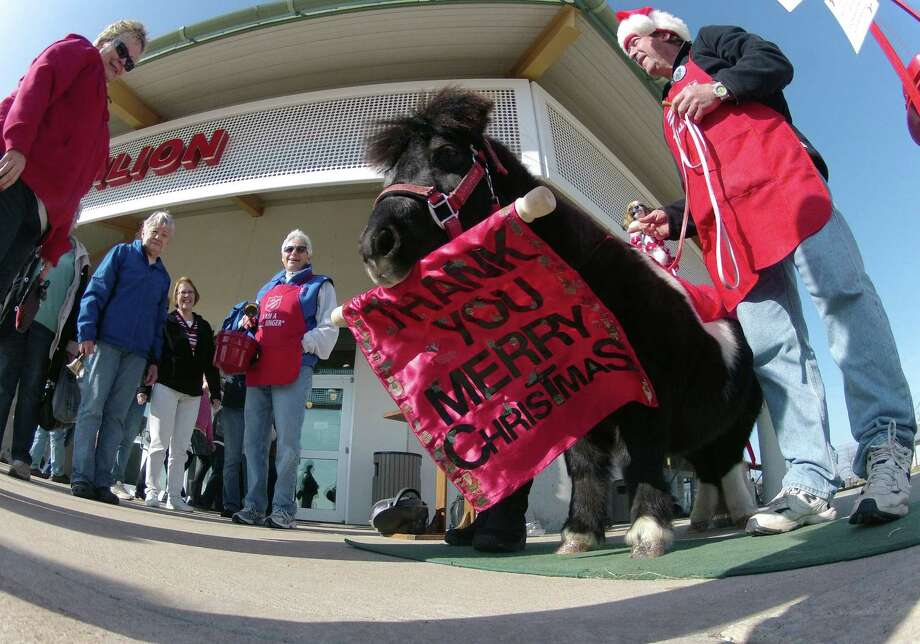 In this Nov. 17, 2012 photo Tinker, a miniature horse, greets crowds with a Thank You Merry Christmas Sign outside a craft fair in West Bend, Wis.  Tinker, a big money raiser for the Salvation Army, uses his mouth to ring a bell and holds up this sign after donations. Salvation Army officials say a good kettle for a couple of hours brings in about $250 and for the same time period Tinker has been known to bring in $2,500. Photo: Carrie Antlfinger, AP / AP