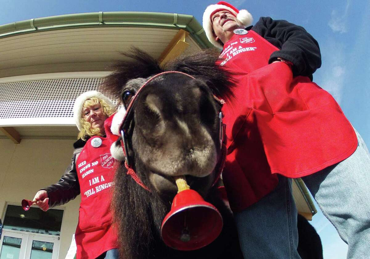 In this Nov. 17, 2012 photo Tinker, a miniature horse, rings a red bell for the Salvation Army outside a craft fair in West Bend, Wis. with his owners Carol and Joe Takacs. Salvation Army officials say Tinker raises 10 times more than a regular bell ringer.