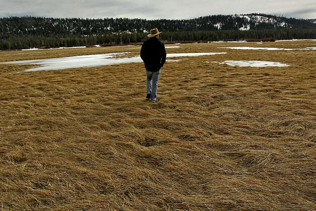 John Svahn stewarship director with the Truckee Donner Land Trust, walks Lacey Meadows near Truckee, Calif. on Tuesday Nov. 27, 2012, which is part of the newly acquired property. About 3,000 acres of scenic backcountry in the Sierra Nevada north of Truckee will be permanently protected under a deal announced last week by two conservation groups. Webber Lake and Lacey Meadows, located at the headwaters of the Little Truckee River, will be opened to the public for the first time in more than 100 years under the agreement. The Truckee Donner Land Trust and Trust for Public Land bought the land for $8 million from Clifton and Barbara Johnson, whose family had owned the property for nearly a century. The Johnsons used Lacey Meadows for summer sheep grazing. Photo: Michael Macor, The Chronicle