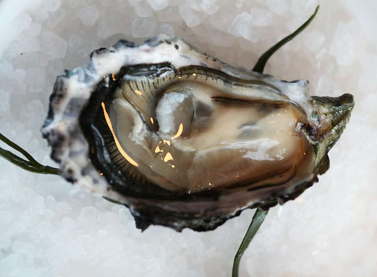 A shucked Drakes Bay oyster is seen at Waterbar on Thursday, November 29, 2012 in San Francisco, Calif.