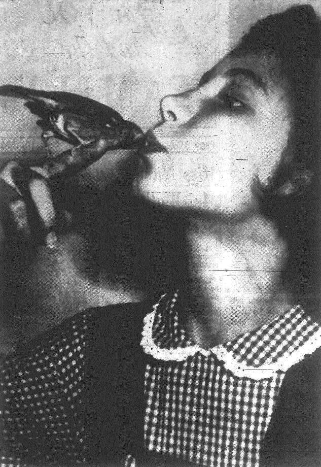 """This is not a parakeet or a lovebird, but a common sparrow found and tamed by Ann Boubel, above, who named the bird """"Pepi."""" Ann is the daughter of Mrs. Tamara Boubel. Published in the San Antonio News Dec. 10, 1962. Photo: File Photo"""