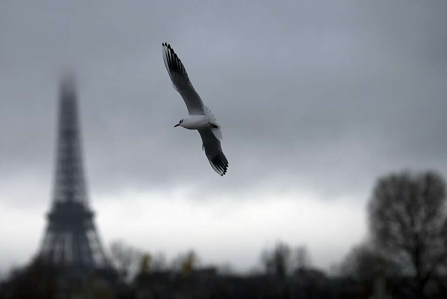 Gray Paree! A gull swoops by the Eiffel Tower on a dark, cloudy day in Paris. Photo: Joel Saget, AFP/Getty Images