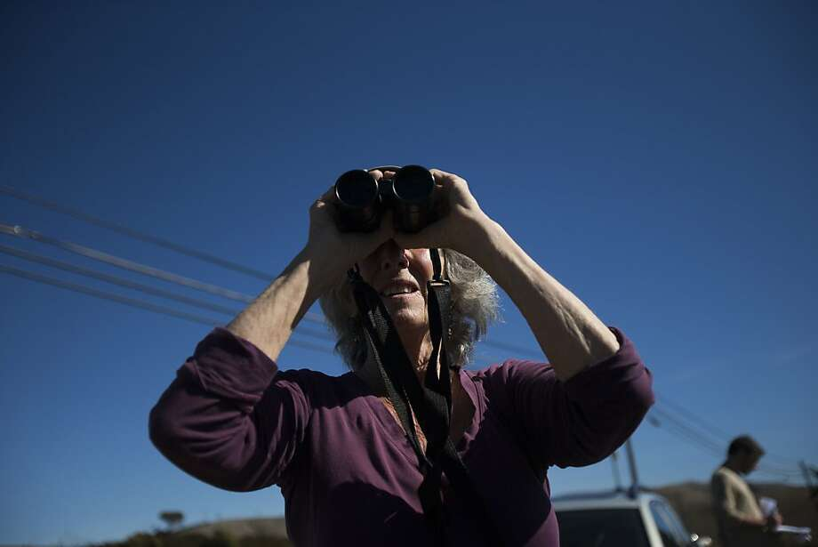 Action Tomales Bay co-founder Susan Prince scans the 