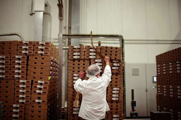 An employee stacks yogurt pallets at Fage USA Dairy Industry in Johnstown, N.Y., Jan. 6, 2012. Sales of Greek yogurt are booming, and leading brands are expanding their operations and the production jobs they entail. Sales of Greek yogurt are booming, a benefit of the perception that the food is healthier than regular yogurt and other snacks, so leading brands are expanding their operations and the production jobs they entail. (Nathaniel Brooks/The New York Times) Photo: NATHANIEL BROOKS / NYTNS