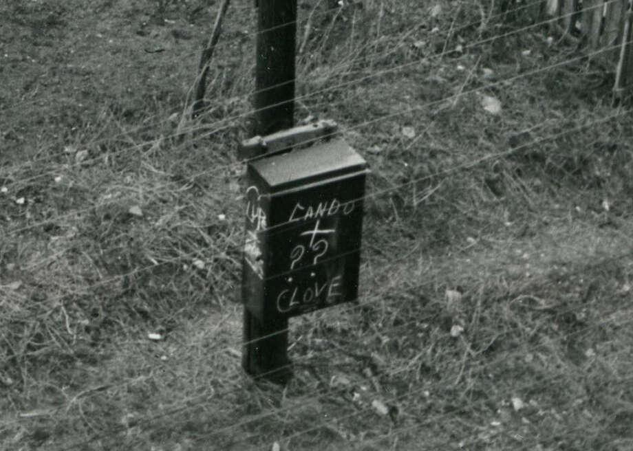 Schrimpf Alley, 1953 (Houston Chronicle)