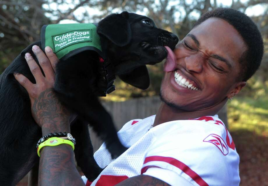 San Francisco 49ers cornerback Chris Culliver plays with Radish, a 12-week-old black Labrador puppy in training with Guide Dogs for the Blind in San Rafael Monday Nov. 26, 2012. Photo: Lance Iversen, The Chronicle / ONLINE_YES