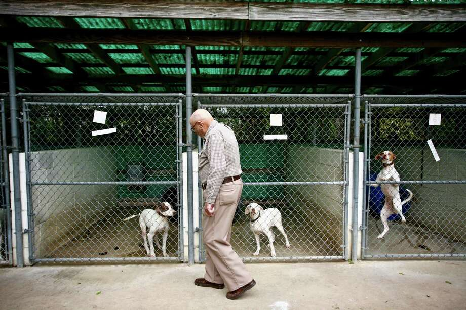 Hilmar Moore is an avid hunter and keeps several hunting dogs ready in his kennels for when he goes quail and pheasant hunting. Photo: Michael Paulsen, Houston Chronicle / Houston Chronicle