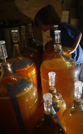 Bottled ciders are tagged for blending at a cidery. Photo: Liz Hafalia, The Chronicle