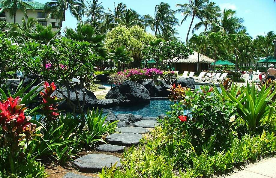 Green Hawaiian holidays: Eco-friendly gifts and travel tips - SFGate