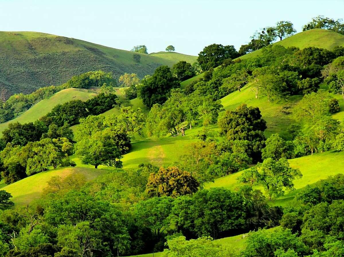 Panorma of foothills extending across Sunol Regional Wilderness. Photo by Deane Little