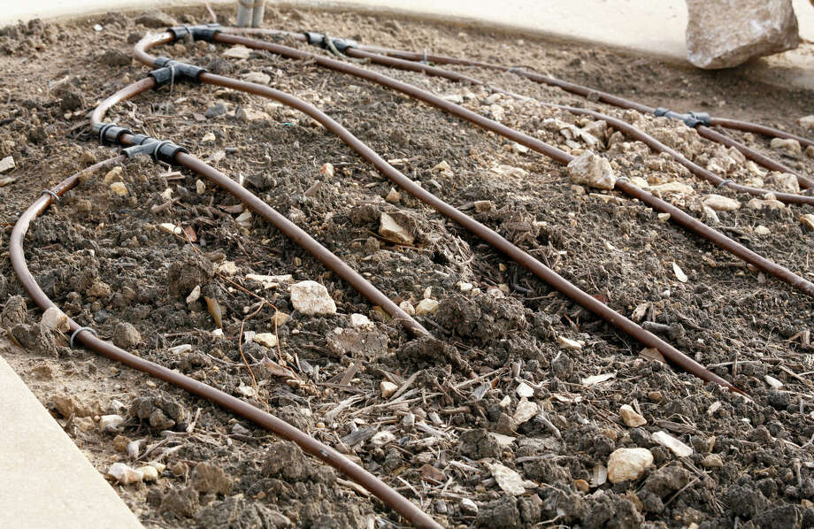 Efficient drip-irrigation systems for landscapes and gardens save water. Photo: File Photo / THE SAN ANTONIO EXPRESS-NEWS