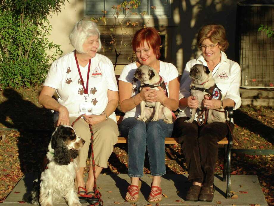 Annette Eicke with Tristan (from left), Vicky Gurinsky with Missy and DPP President Miguelita Scanis with her pug Saxon pose in the visitors' courtyard at Emeritus Oakwell Farms off Harry Wurzbach. Photo: Miranda Koerner / For North Cent