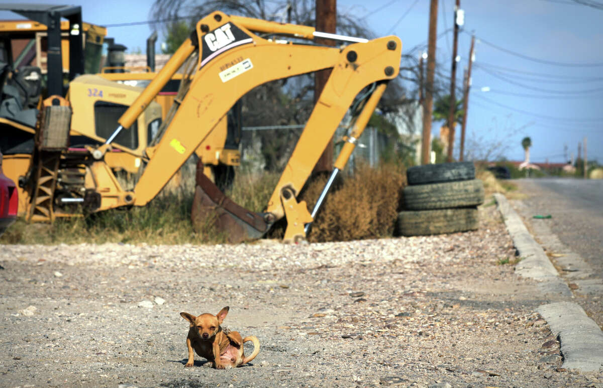 A little dog busily scratches itself near some Maverick County equipment, which is sitting unused along the side of a street paved within the past few years in the impoverished Precinct 2 colonia of Pueblo Nuevo.