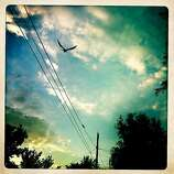 A lone crow flies over some telephone lines.
