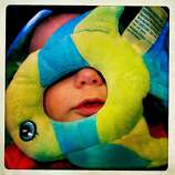 Quinn gets his plushy fish stuck on his face - yet another moment that made me laugh when we were alone together.