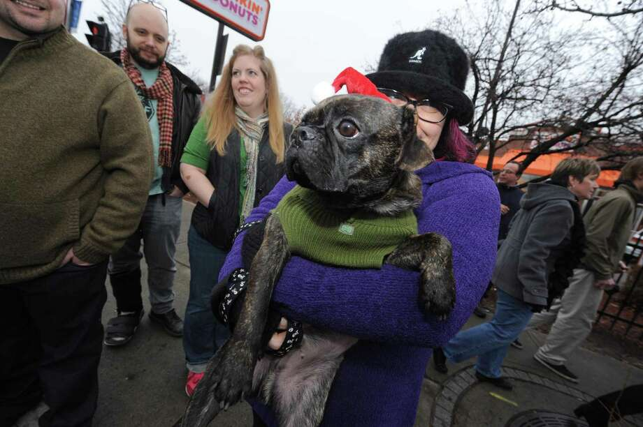 David Lee Roth the dog and owner Nicole Karas watch the 2012 Santa Speedo run on Lark Street in Albany, NY Saturday Dec. 8, 2012. (Michael P. Farrell/Times Union) Photo: Michael P. Farrell