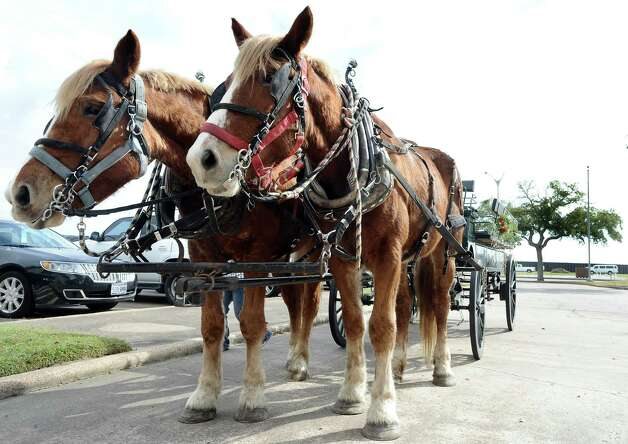 Horse-drawn carriages wait at the front door for the next family to jump on for a spin at the Museum of the Gulf Coast for Sleigh Bells Ring! in Port Arthur on Saturday, December, 8 2012. Photo taken: Randy Edwards/The Enterprise Photo: Randy Edwards