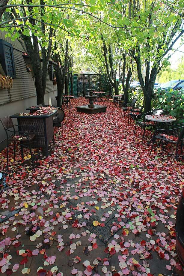 The fall colors and the lack of patrons on the side patio at Hauck Cellars is an indication of the winter drop-off in wine tourism in Healdsburg. Photo: Spud Hilton, The Chronicle