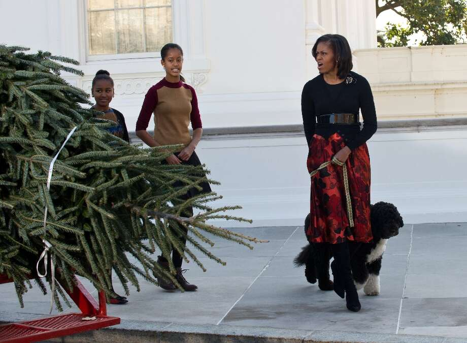 US First Lady Michelle Obama (R) and her daughters Malia (C) and Sasha (L) arrive with dog Bo to receive the White House Christmas tree in Washington on November 23, 2012. (Nicholas Kammnicholas / Getty Images) Photo: NICHOLAS KAMM, AFP/Getty Images / AFP