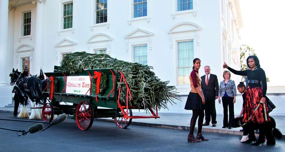 First lady Michelle Obama with daughters Sasha, behind the first lady, and Malia, left, and family dog Bo flashes a thumbs up as they welcome the arrival of the official White House Christmas tree, a 19-foot Fraser Fir from Jefferson, N.C., Friday, Nov. 23, 2012, at the North Portico of the White House in Washington.  (Manuel Balce Ceneta / AP Photo) Photo: Manuel Balce Ceneta, Associated Press / AP