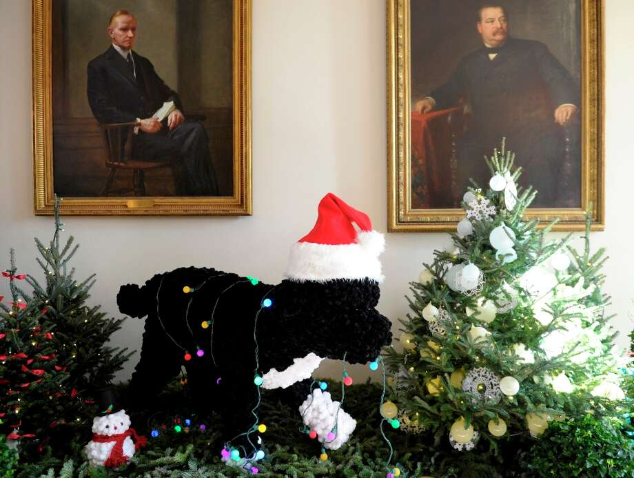 A life-sized replica of the Obama family dog, Bo, a Portuguese Water Dog, is the centerpiece of the East Garden Room of the White House in Washington, Wednesday, Nov. 28, 2012. The theme for the White House Christmas 2012 is Joy to All. (AP Photo/Susan Walsh) (Susan Walsh / AP Photo) Photo: Susan Walsh, Associated Press / AP