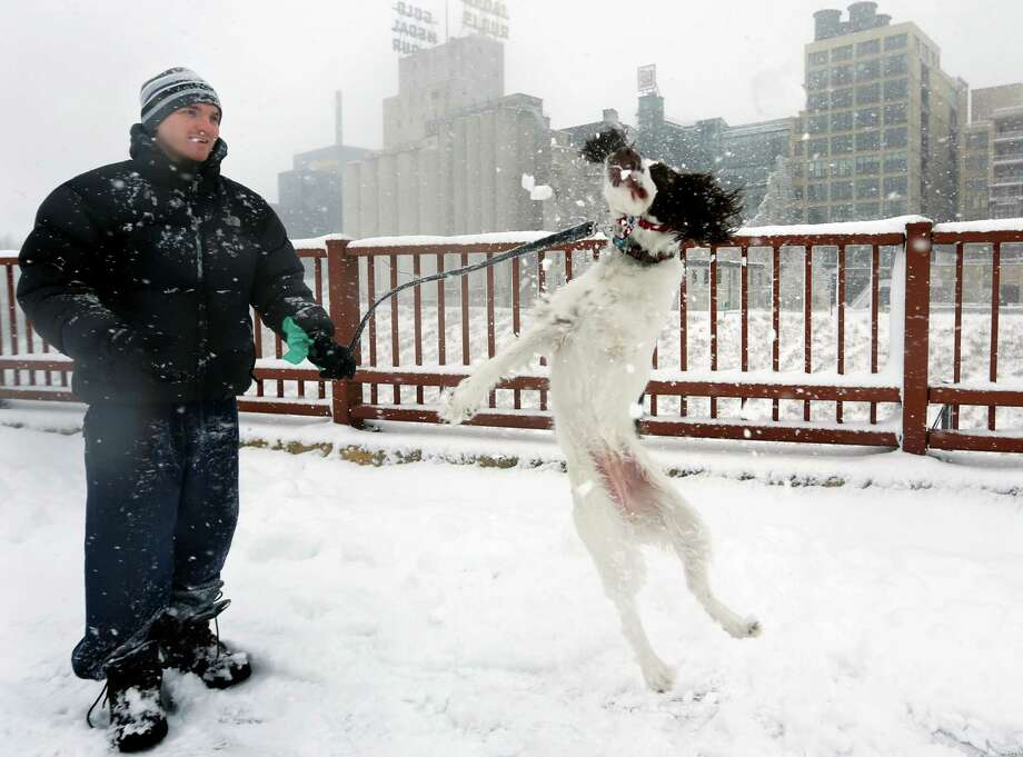 Adam Womersley and his English Springer Spaniel, Stella walk in the snow on Sunday, Dec. 9, 2012, in Minneapolis. A major winter storm is expected to dump 9 to 15 inches across a broad belt of central Minnesota including the Twin Cities area by Sunday night, and the storm was also to bring heavy snow to parts of western Wisconsin. (AP Photo/The Star Tribune, Richard Tsong-Taatarii)  MANDATORY CREDIT; ST. PAUL PIONEER PRESS OUT; MAGS OUT; TWIN CITIES TV OUT Photo: Richard Tsong-Taatarii, Associated Press / The Star Tribune
