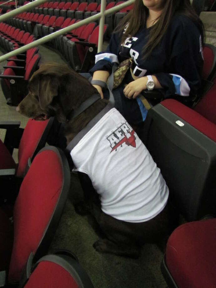 A custom fan-made Aeros dog jersey. (Mike Damante)